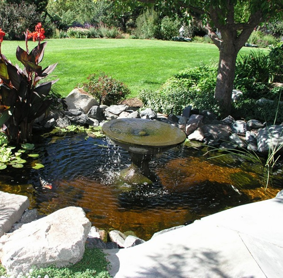 Image of: Backyard Fountain Pond Design