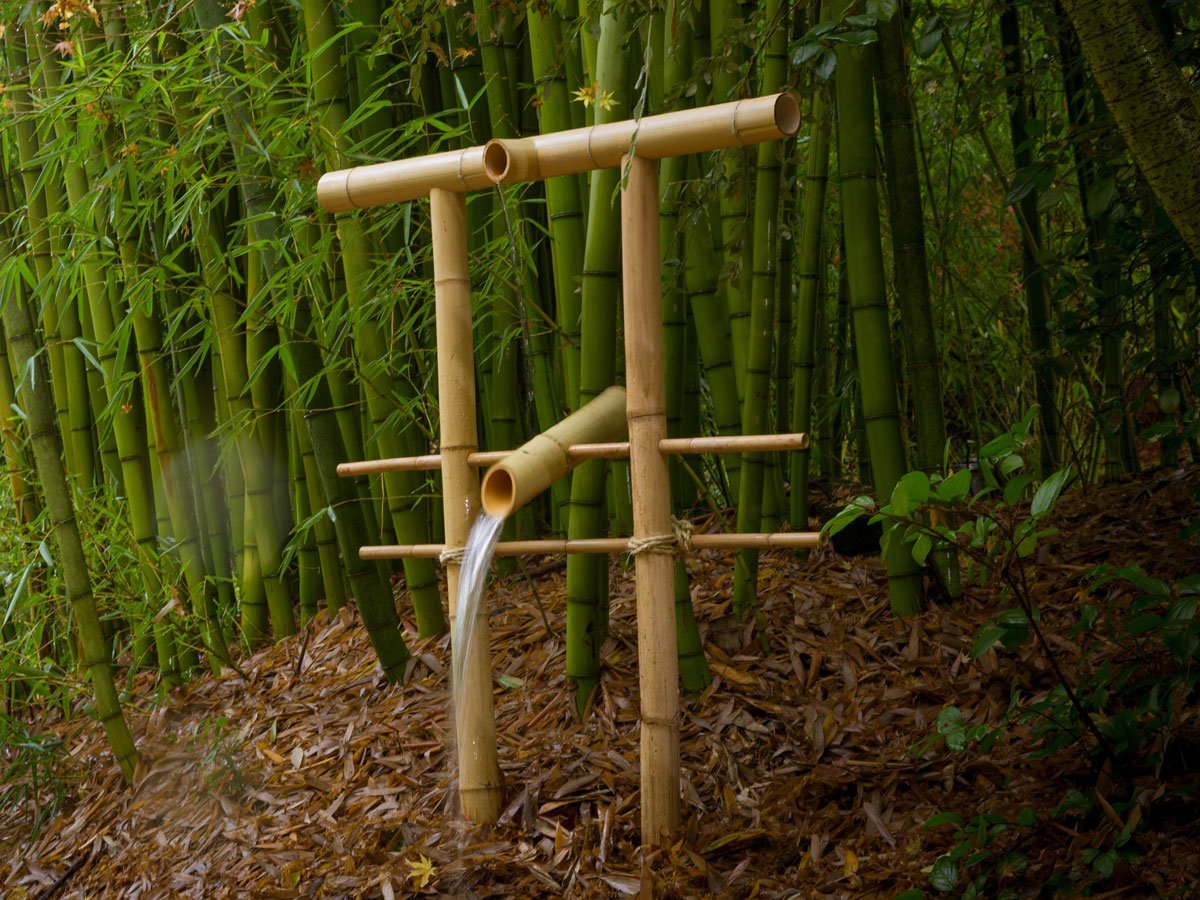 Image of: Outdoor Bamboo Fountain