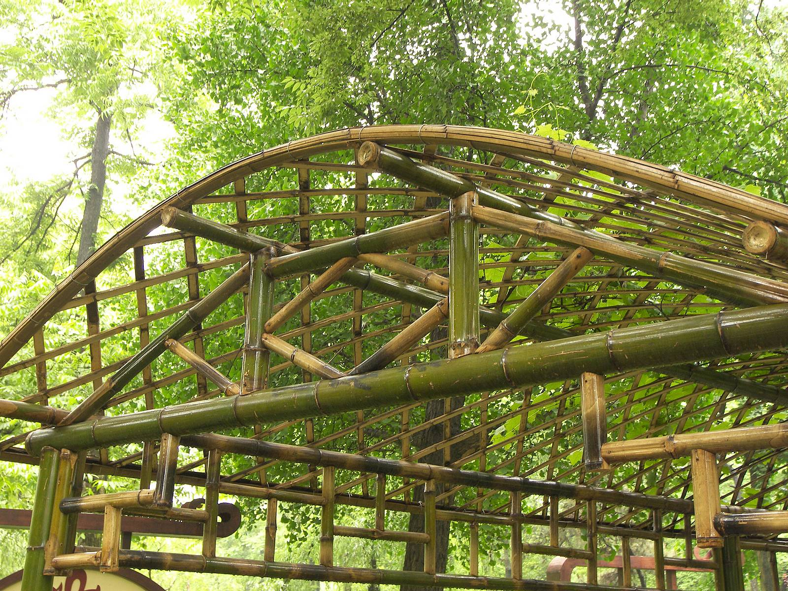 Image of: Popular Bamboo Roof Design