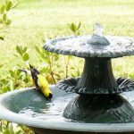 Solar Bird Fountains