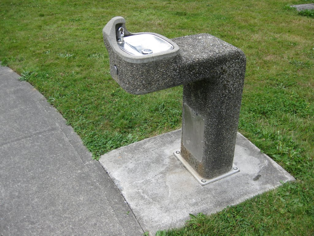 Stylish ADA Drinking Fountain