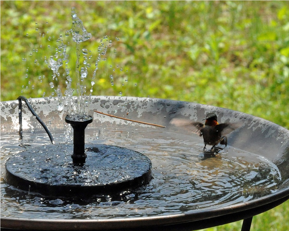 Victorian Pedestal Bird Bath Fountain Solar