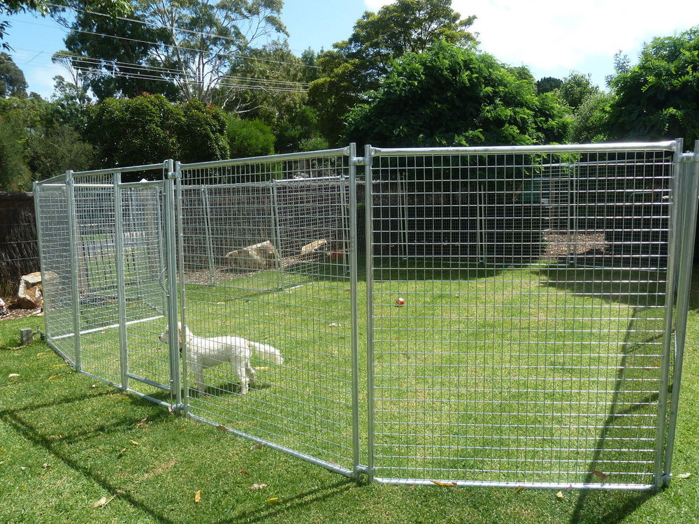 Image of: Yard 10×10 Dog Kennel Roof