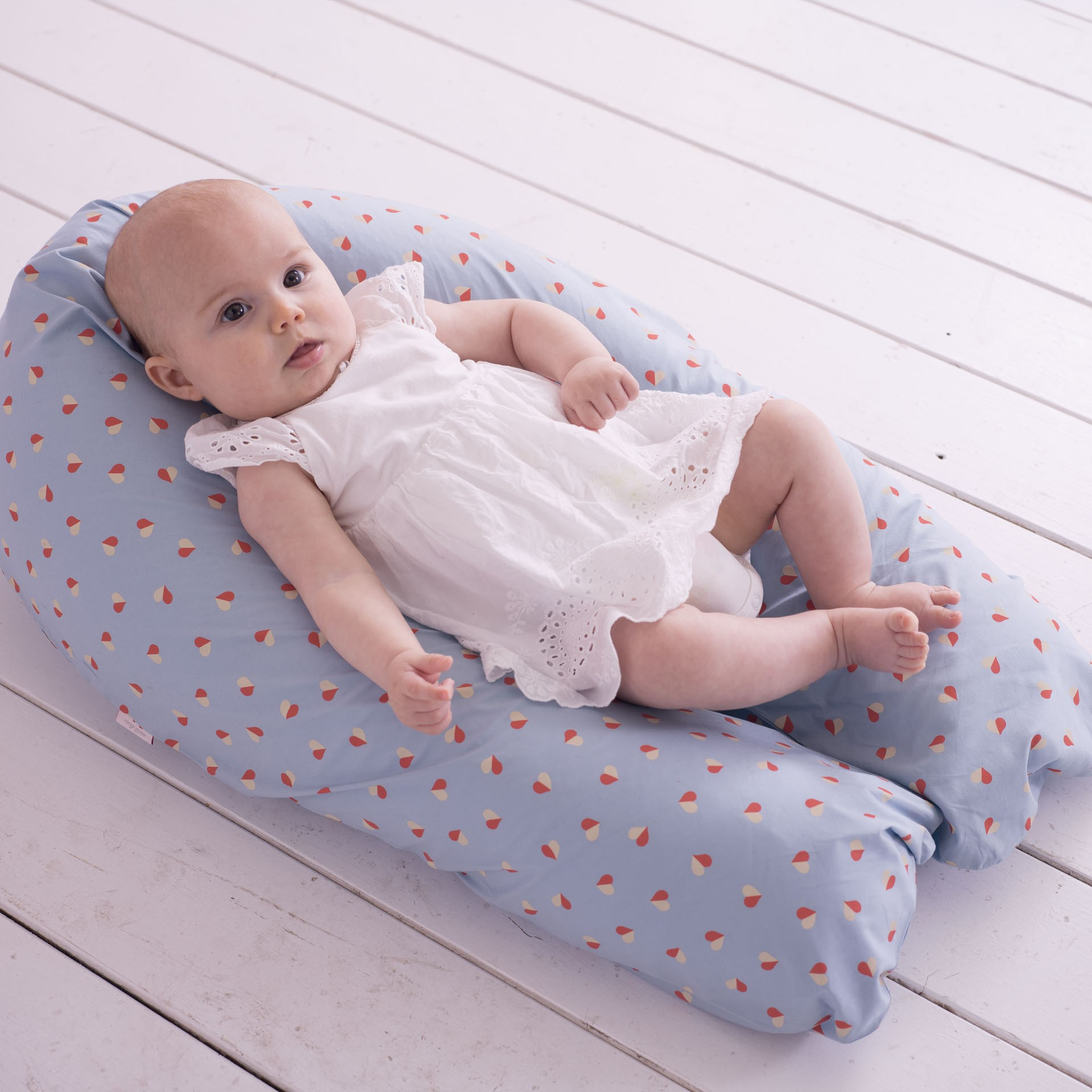 Image of: Beautiful Nursing Pillow
