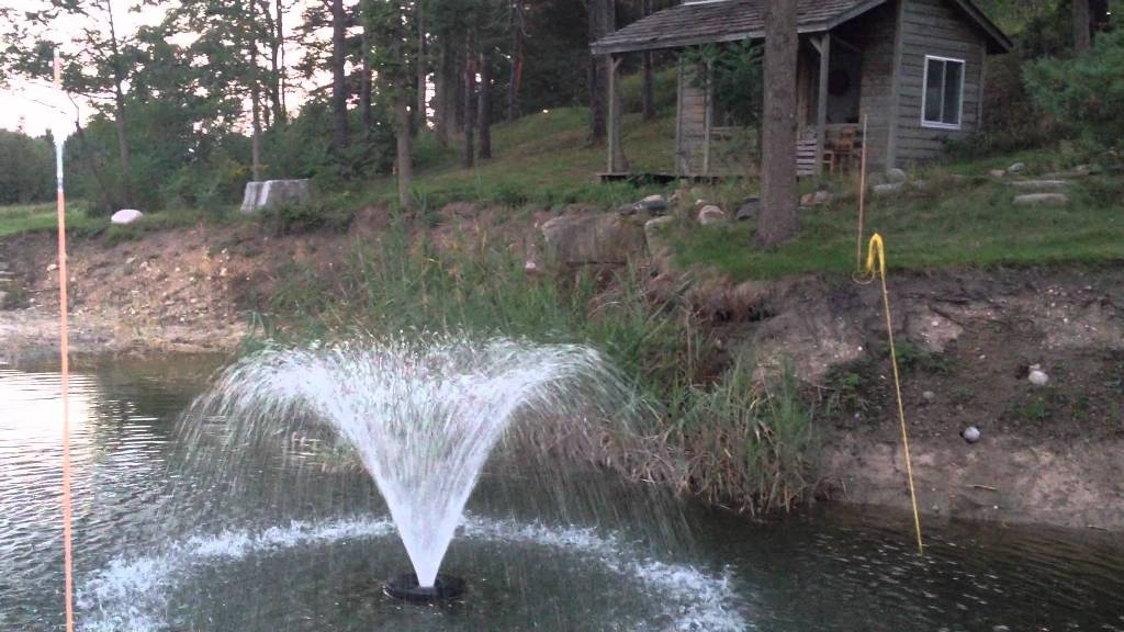 Image of: Best DIY Pond Fountain
