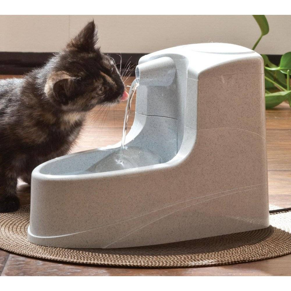 Image of: Cat Drink Well Fountain
