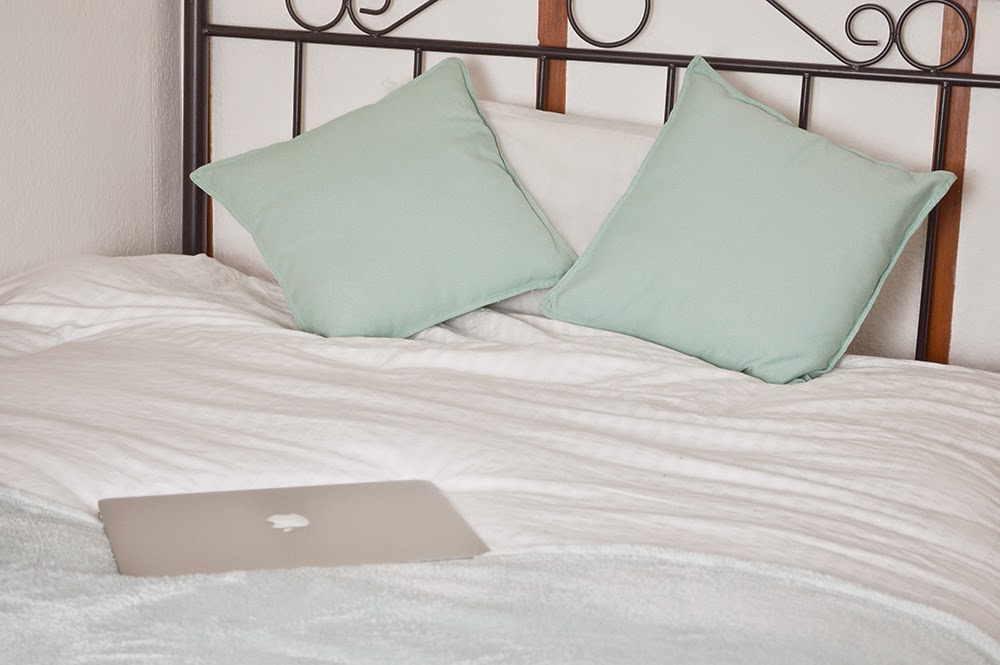 Image of: Cheap Mint Pillows