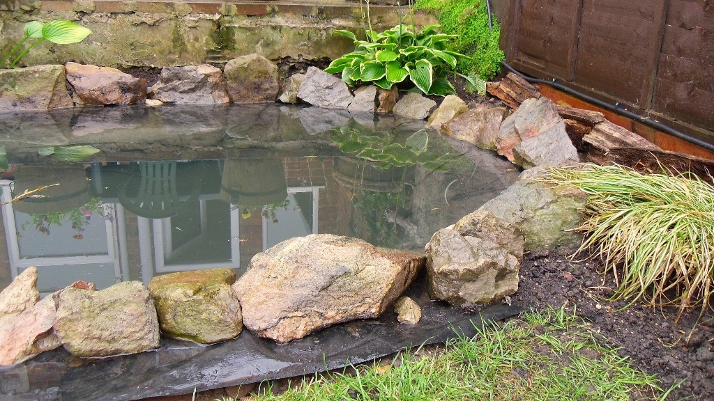 Image of: DIY Pond Fountain Koi
