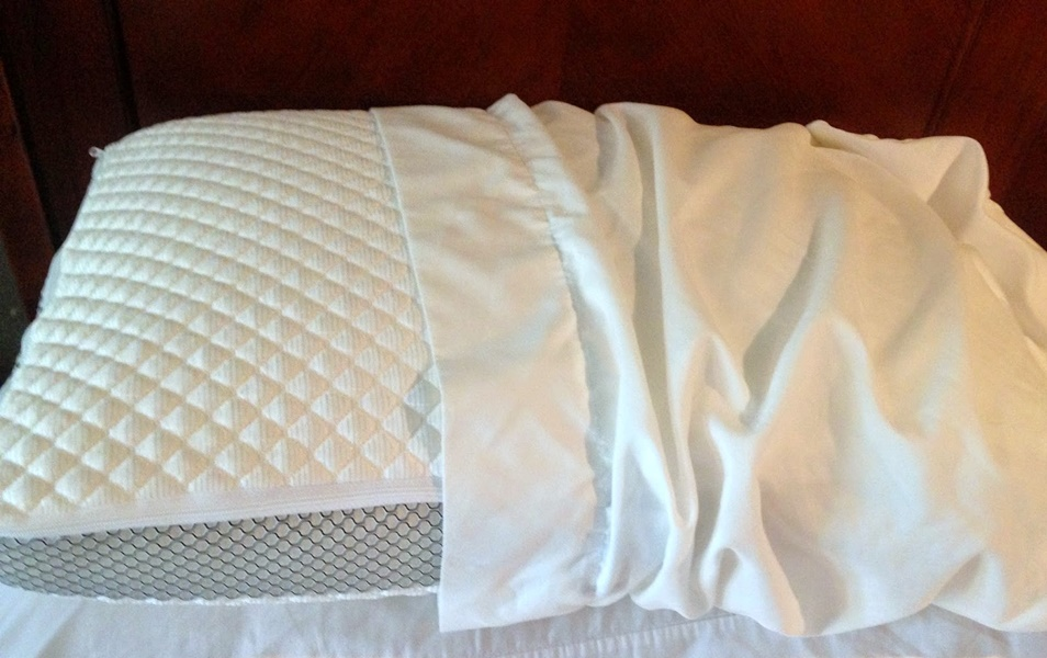 Image of: Decorative Therapedic Pillow