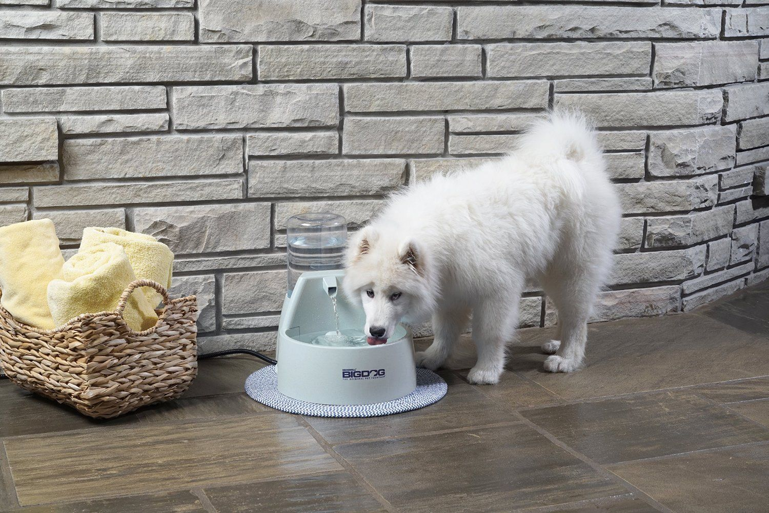 Image of: Dog Water Bowl Fountain