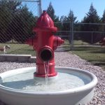 Dog Water Fountain Outdoor Game