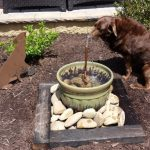 Dog Water Fountain Outdoor for Park