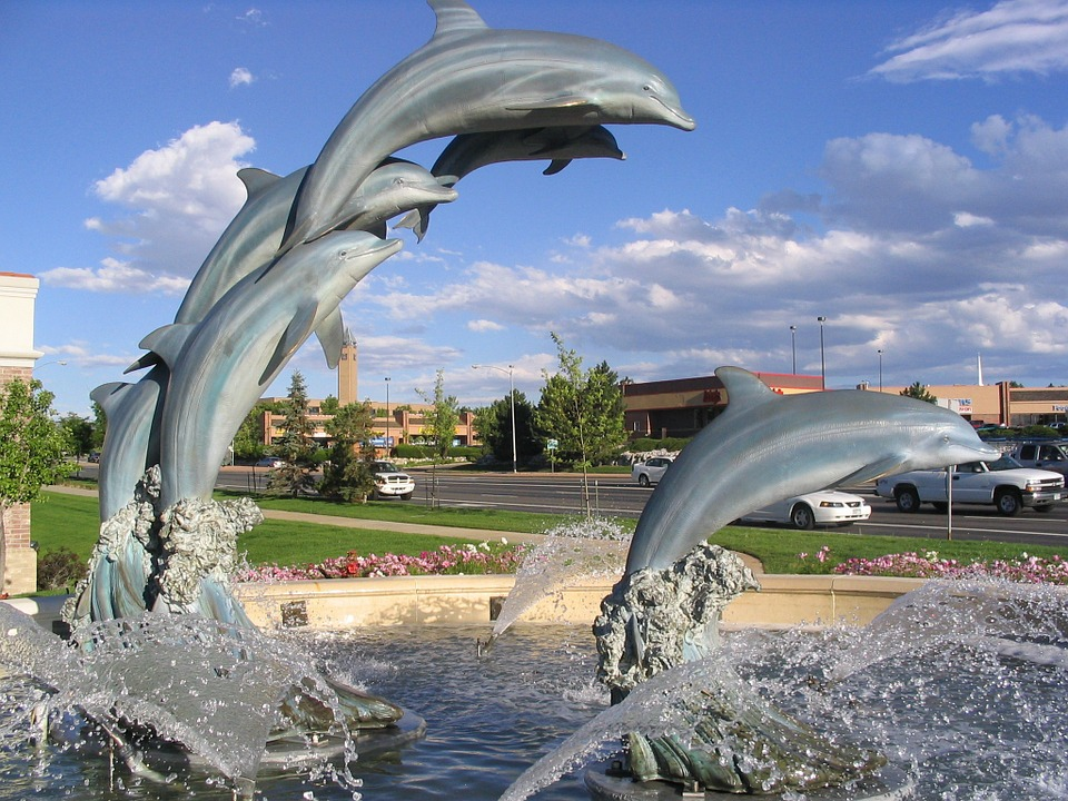 Image of: Dolphin Water Fountain Photo
