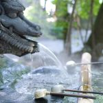 Dragon Water Fountain Set