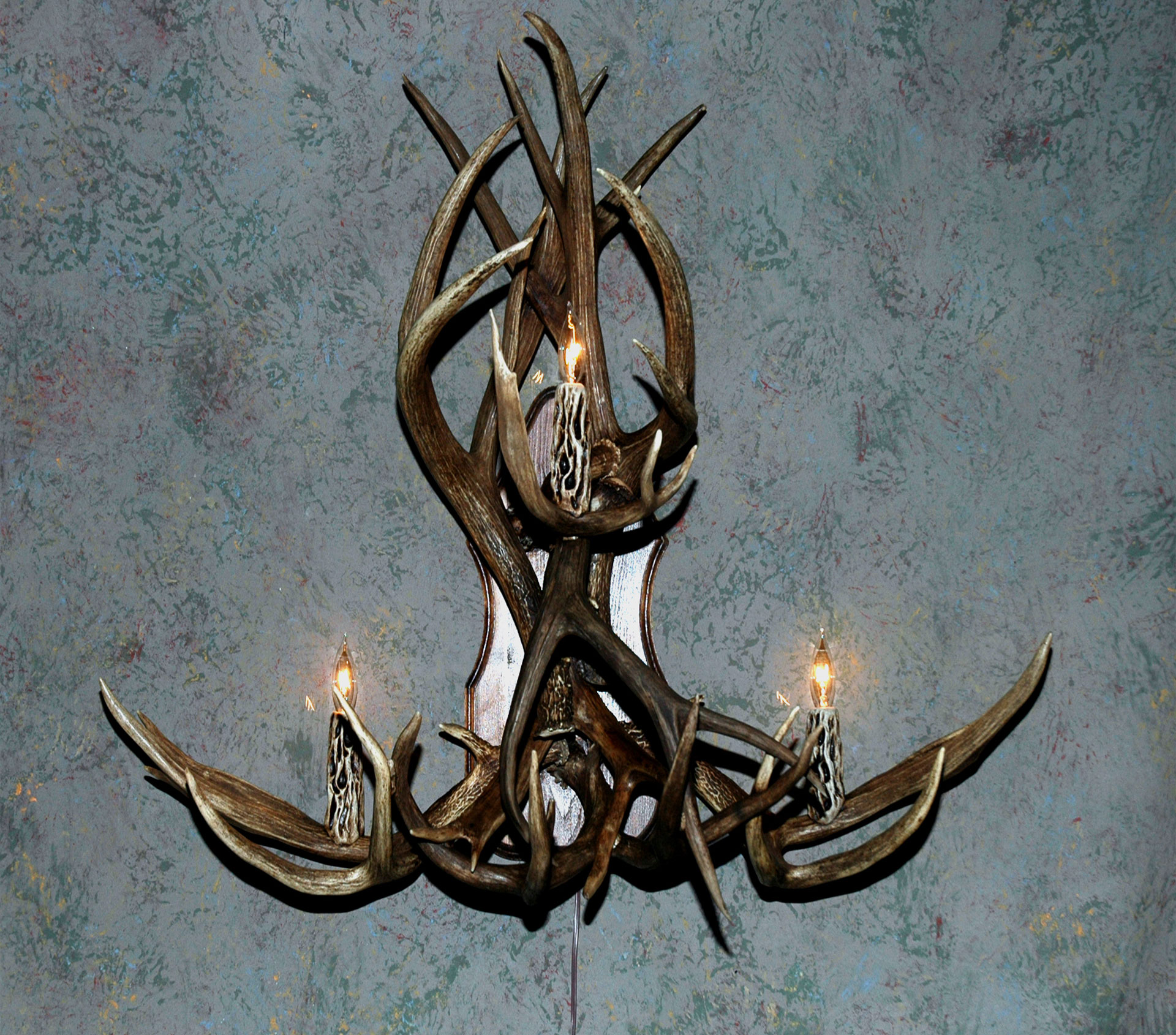 Image of: Famous Antler Sconces
