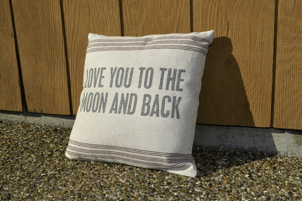 Image of: Ikea To The Moon And Back Pillow