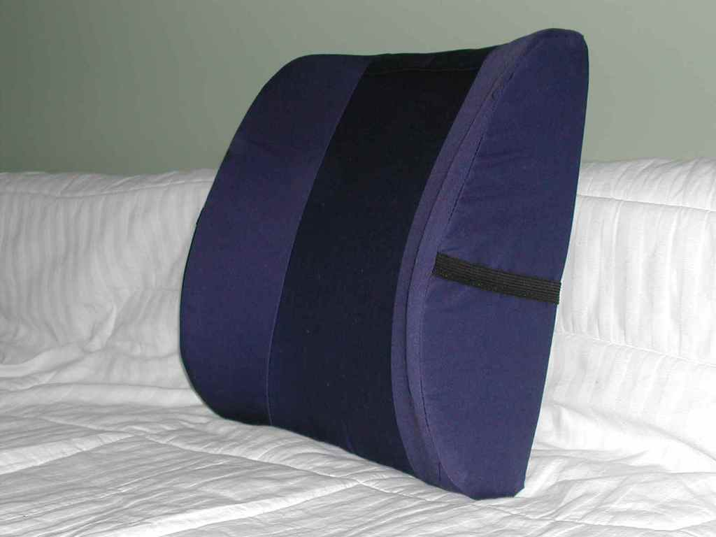 Image of: Orthopedic Pillow for Back Pain