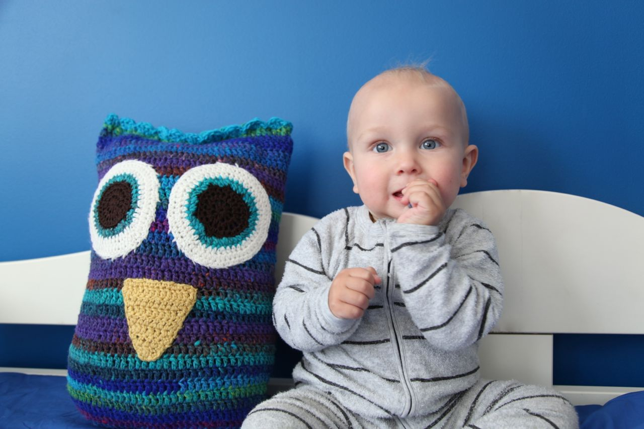 Image of: Owl Pillow Design Ideas