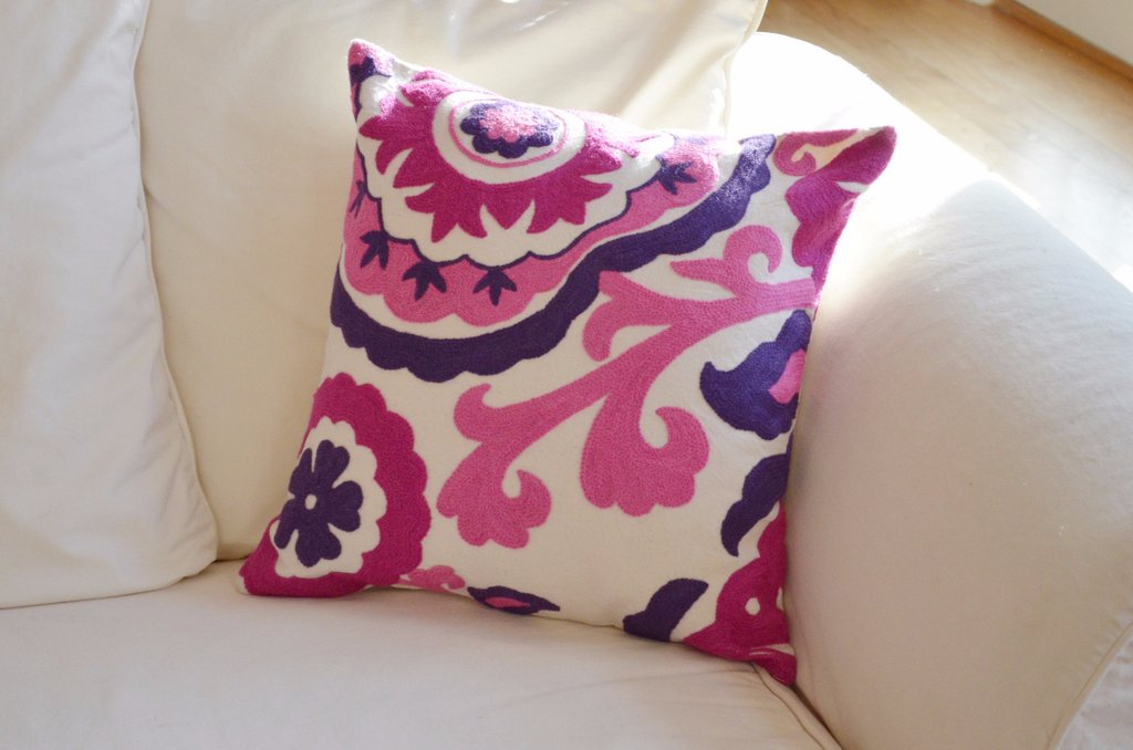 Image of: Pink Throw Pillows and Blue