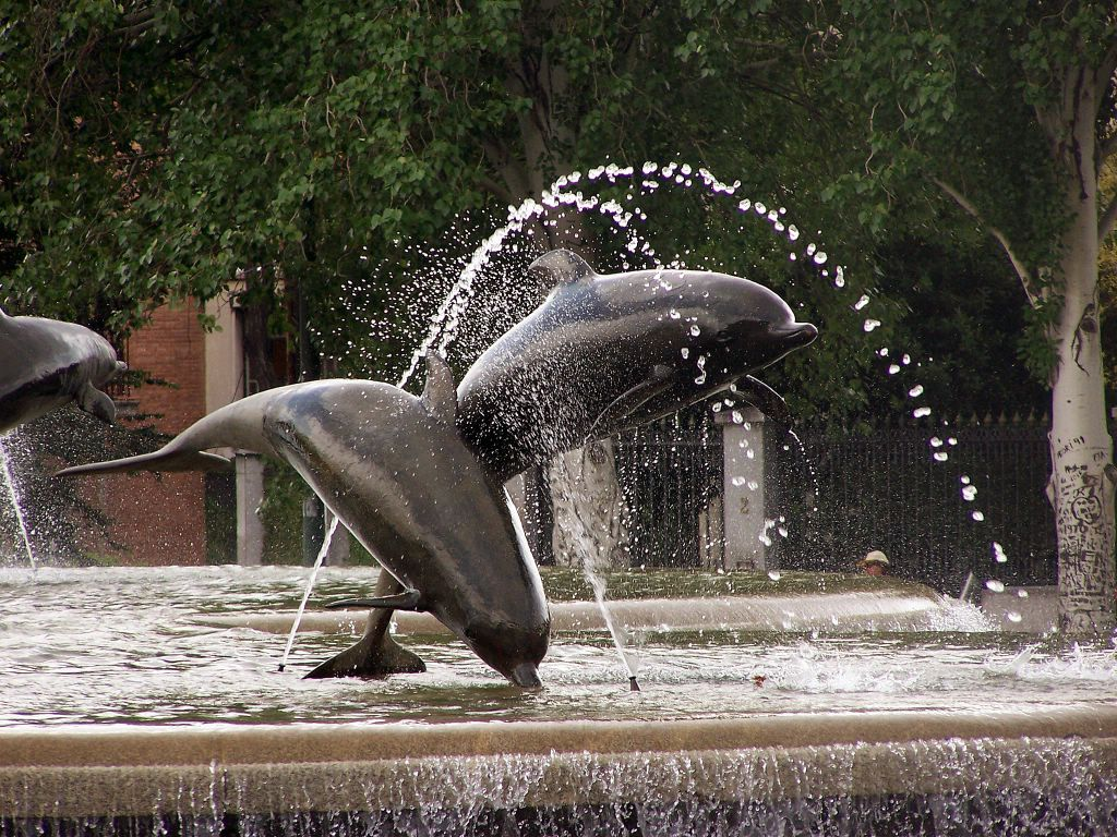 Pretty Dolphin Water Fountain