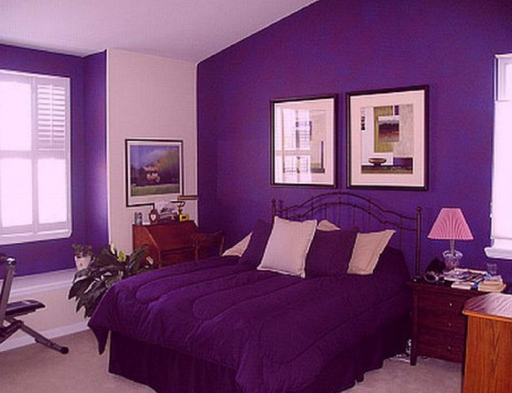 Image of: Purple Decorative Pillows Design