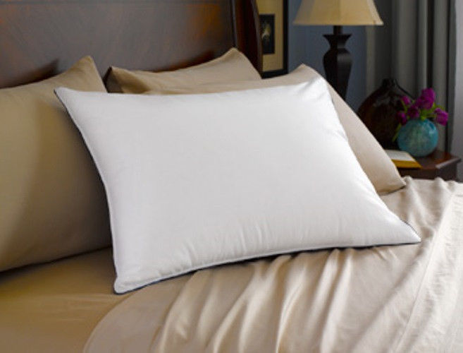 Image of: Sealy Posturepedic Pillows Decorative