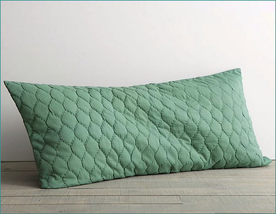 Image of: Simple Long Pillow