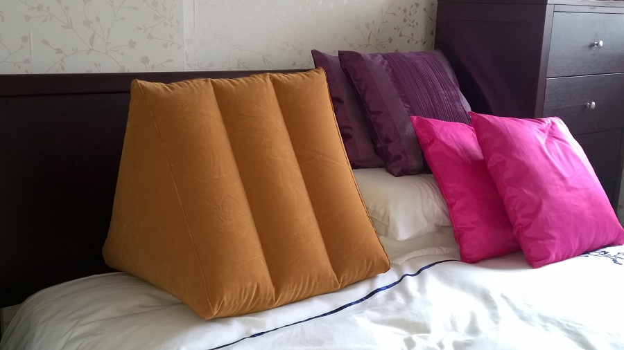 Image of: Sit Up Pillow Colors