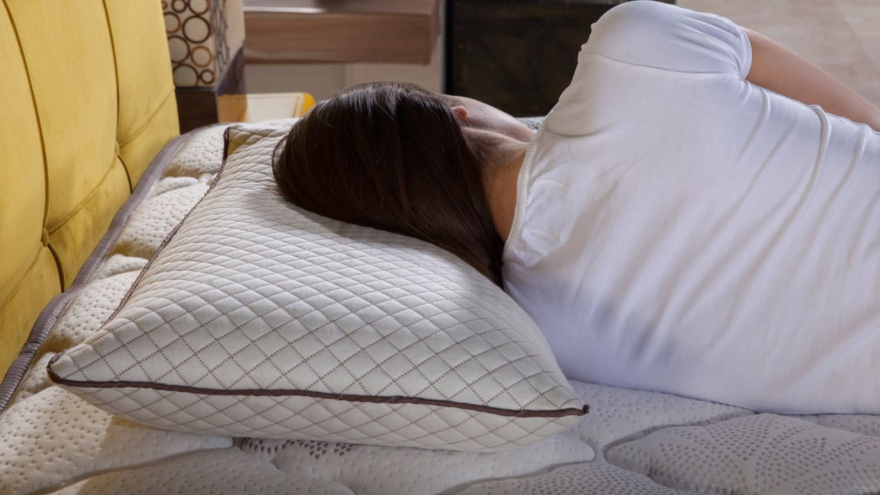 Image of: Smart Therapedic Pillow