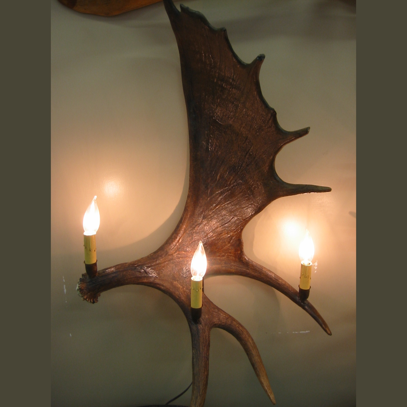 Image of: Stylish Antler Sconces