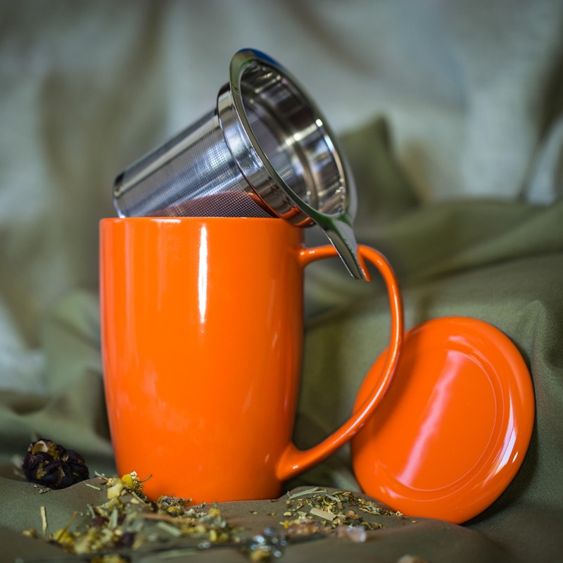 Image of: Best Tea Mug with Infuser