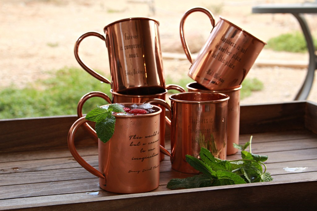 Image of: Contemporary Copper Mug Bar