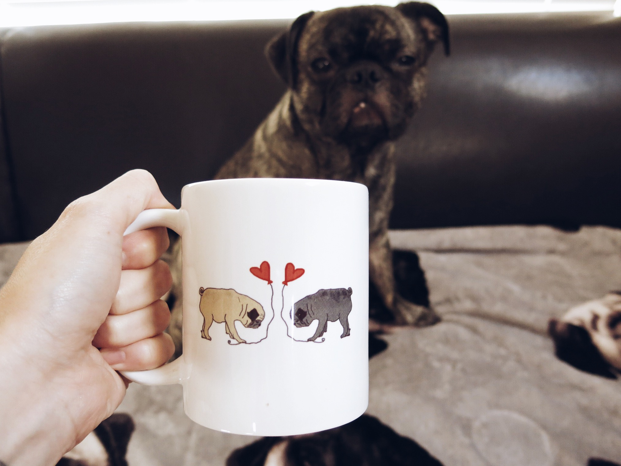Image of: Dress a Pug Mug