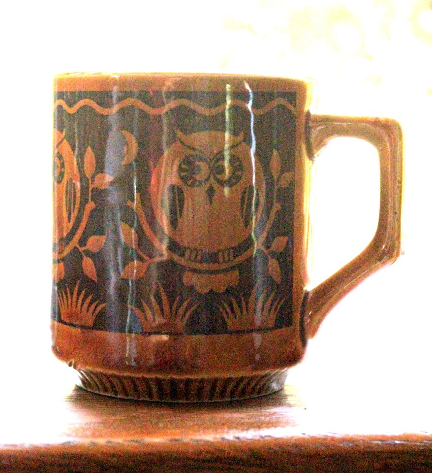 Image of: Owl Mugs Awesome