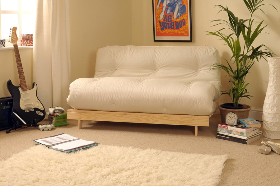 Image of: Functional Futon Sofa Beds