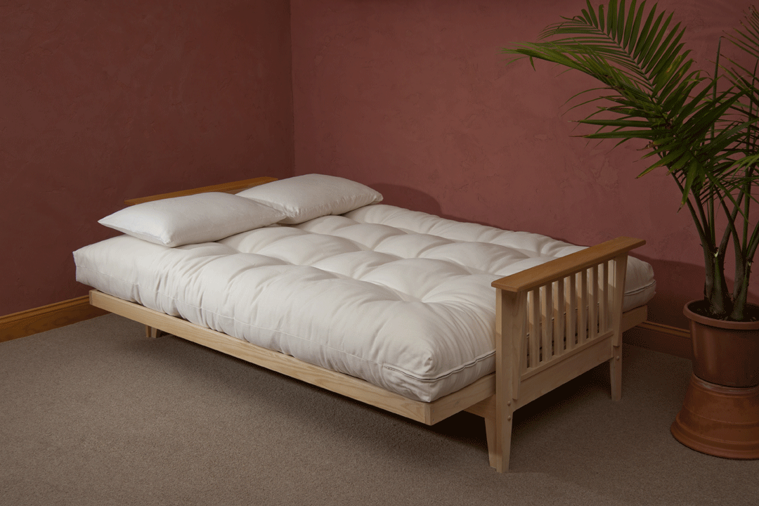 Image of: Futon Cushion Bed