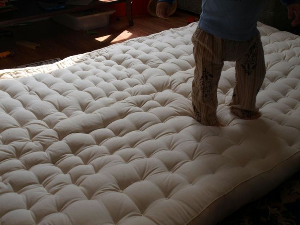Image of: Futon Cushion Chair