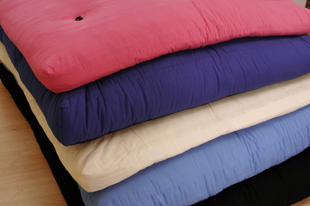 Image of: Futon Cushion Color