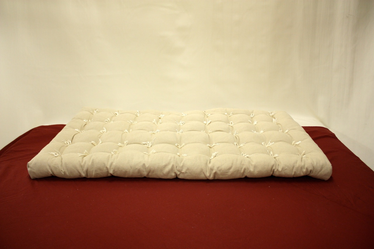 Image of: Futon Cushion Floor