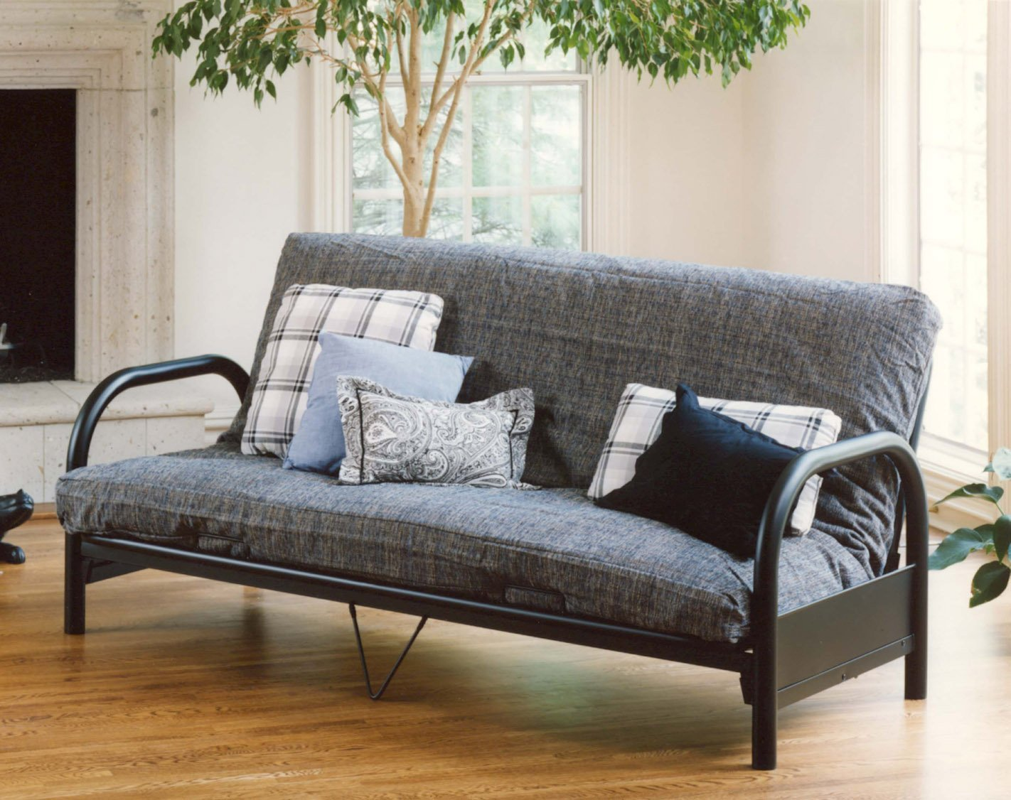 Image of: Futon Cushion Sofa