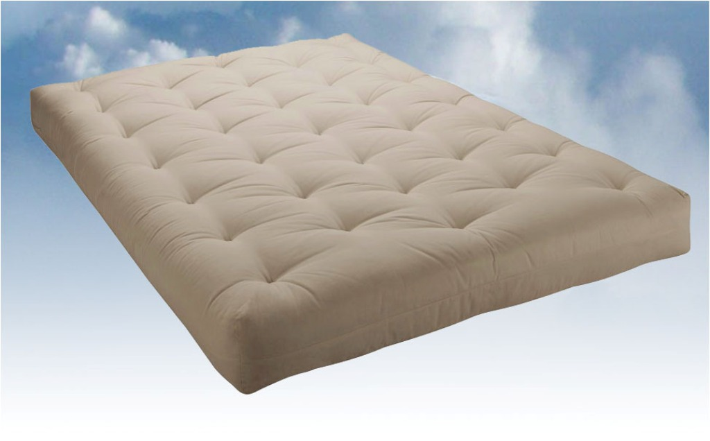 Image of: Futon Cushions Material