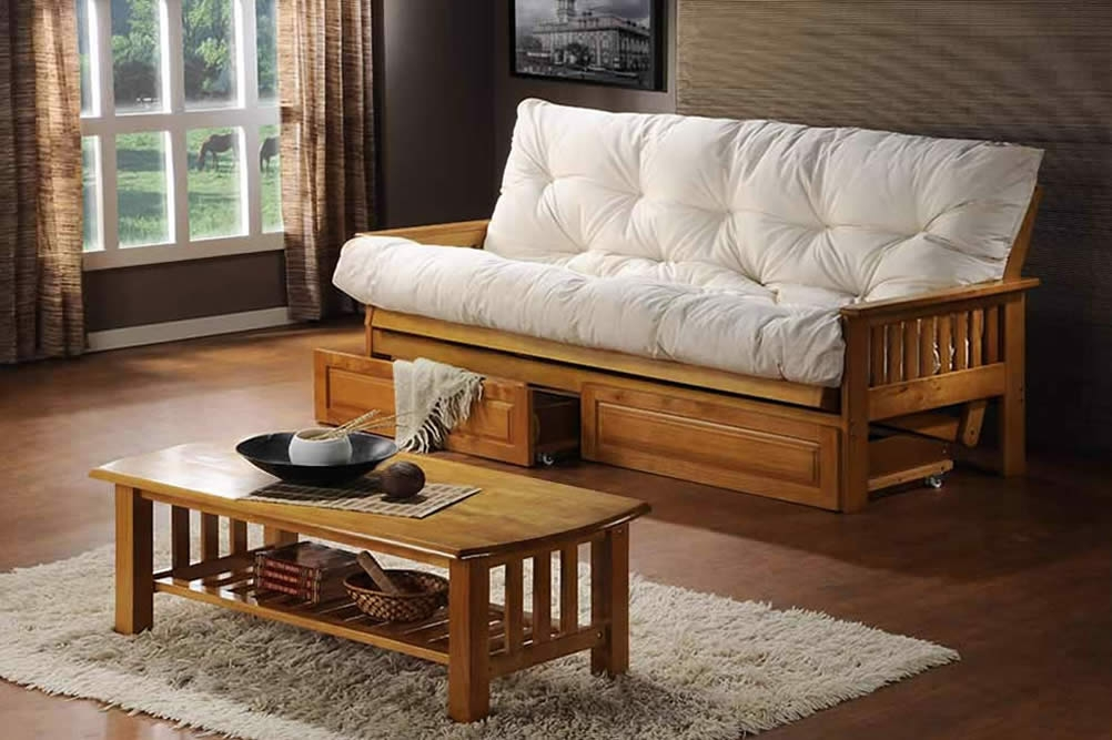 Image of: Futon Size Sleeper Bed with Storage