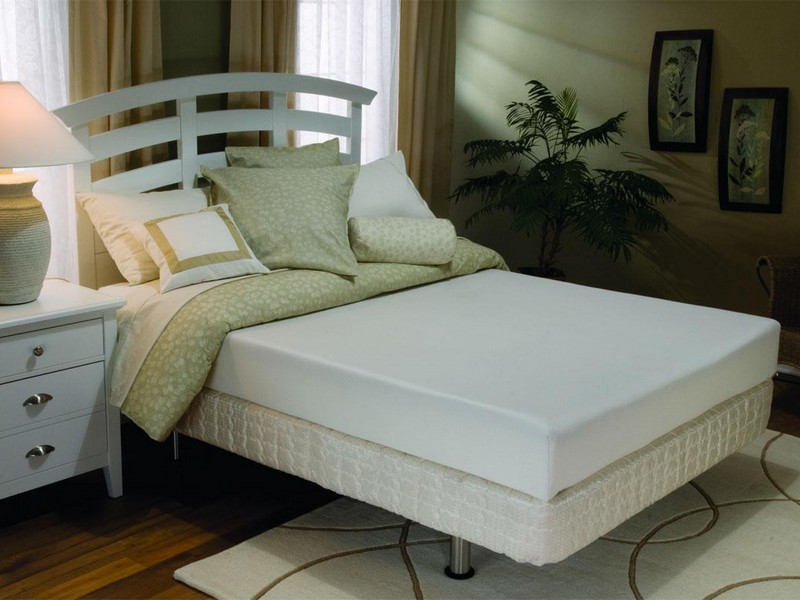 Image of: Futon Topper Bed