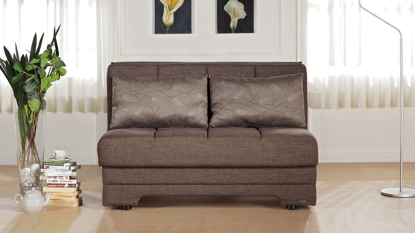 Image of: Loveseat Futon Modern