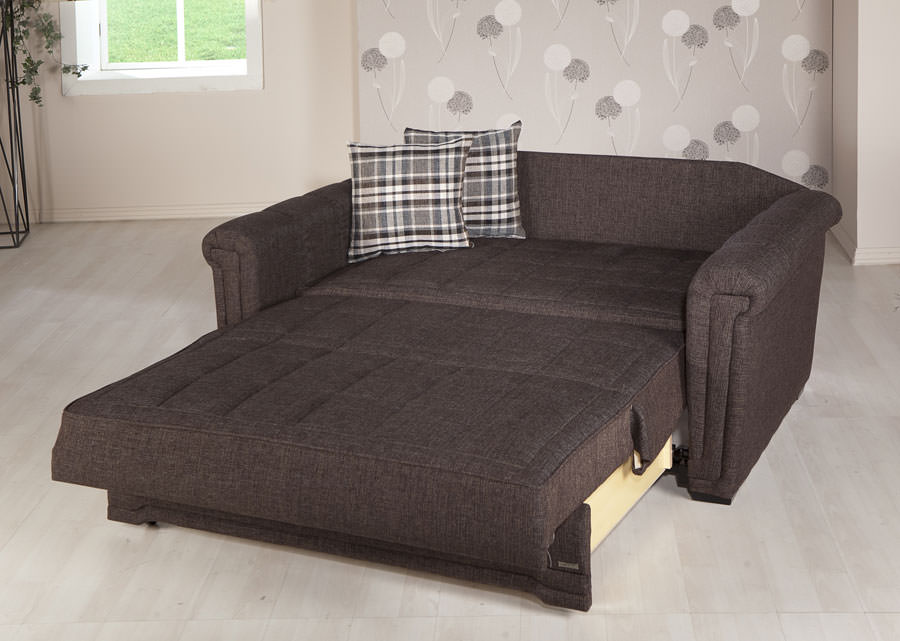Image of: Loveseat Futon Sleeper