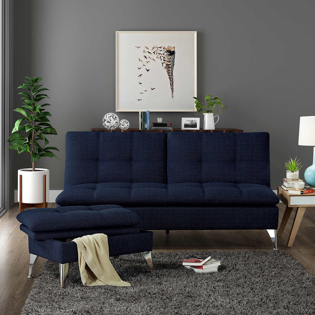 Image of: Modern Costco Futon Sofa