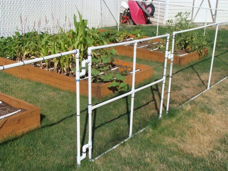 Image of: PVC Decorative Garden Fencing Ideas