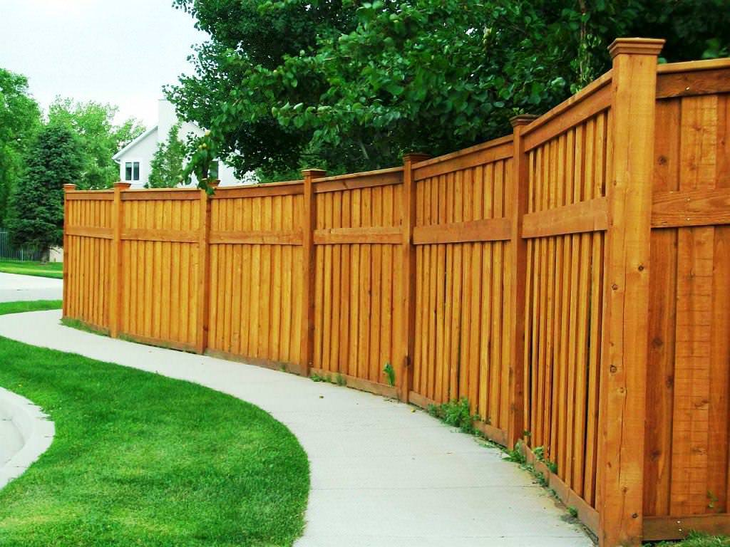 Image of: Backyard Fence Ideas Colors