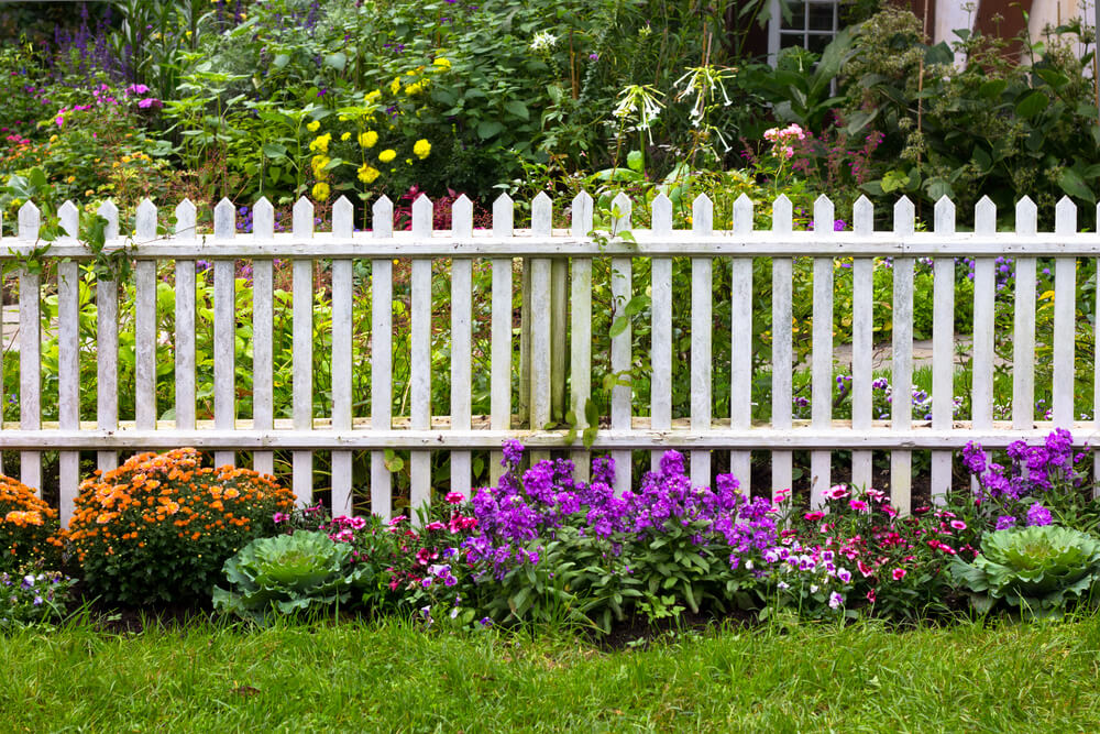 Backyard Fence Ideas Home