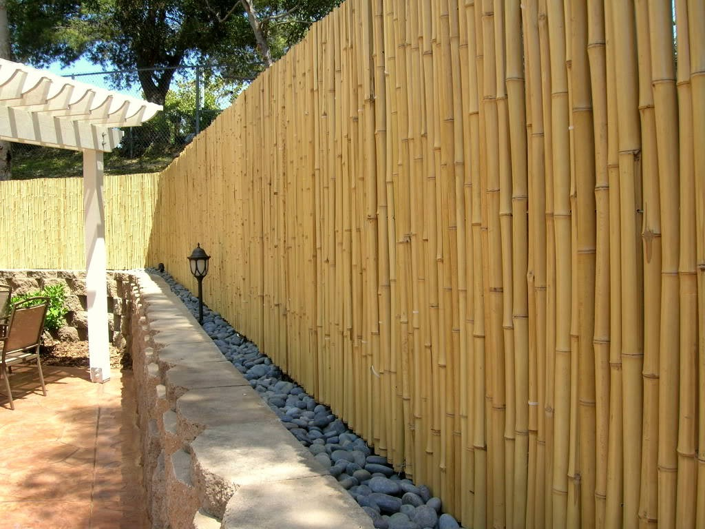 Image of: Bamboo Fence Roll Large Designs Ideas